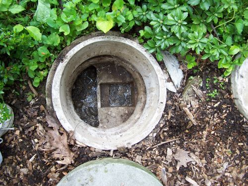 Taking Care of Your Septic System – Dos & Don'ts