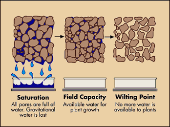 Soil as a Treatment Media